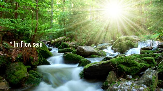 im_Fluss_Flow_sein