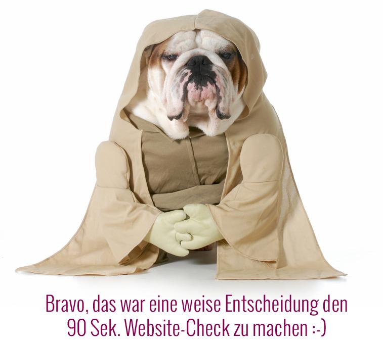 wise dog