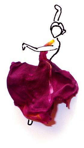 FlamencoSpiegel